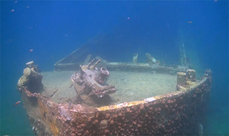 Grenada-Diving-Veronika-wreck-small