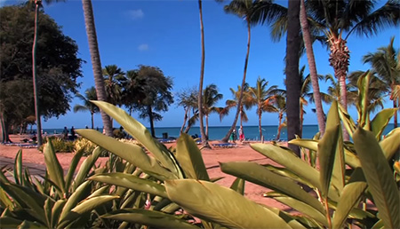Guadeloupe-Beach-at-Langley-Hotel-Fort-Royal--small